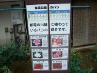 2008050412.jpg