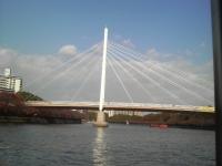 2008112319.jpg